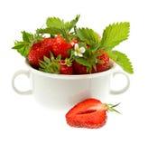 Verse aardbeien met bladeren en bloemen Stock Afbeelding