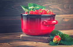 Verse aardbeien in rode pot Stock Foto