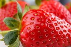 Verse aardbeien in voorgrond Stock Foto's