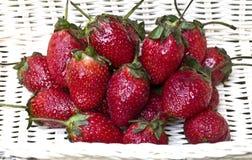 Verse aardbeien in witte mand Stock Foto