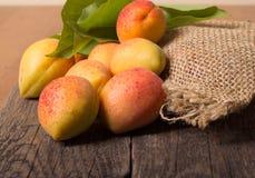 Verse abrikozen met blad Stock Foto