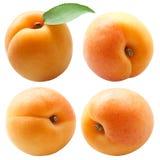 Verse abrikozen met groen die blad op wit wordt geïsoleerd royalty-vrije stock foto