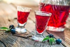 Verse alcoholische drank met bessen en alcohol stock afbeelding