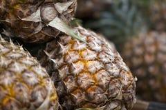 Verse ananas op een markt Stock Afbeeldingen
