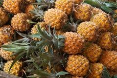 Verse ananas op markt Stock Afbeeldingen