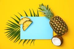 Verse ananassen en kokosnoot stock fotografie