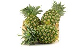 Verse ananasvruchten in een houten krat Royalty-vrije Stock Afbeelding