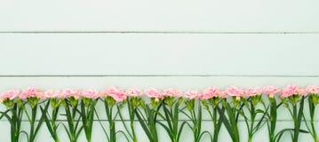 Verse anjerbloemen in de houten raad stock afbeeldingen