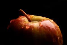 Verse appel Stock Afbeelding
