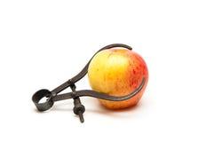 Verse appel die worden gemeten Stock Afbeelding