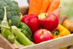 Verse appel en plantaardige oogst van organisch landbouwbedrijf stock afbeelding