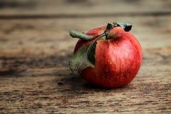 Verse appel royalty-vrije stock foto's