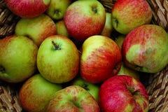 Verse appelen Royalty-vrije Stock Afbeelding