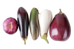 Verse aubergine op een wit Royalty-vrije Stock Foto