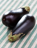 Verse aubergines Stock Afbeeldingen