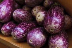 Verse aubergines Royalty-vrije Stock Afbeelding