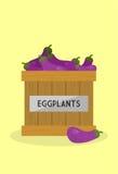 Verse aubergines Royalty-vrije Stock Afbeeldingen