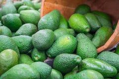 Verse avocado op de markt De avocado's zijn zeer voedzaam en bevatten een grote verscheidenheid van voedingsmiddelen Gezond voeds stock fotografie