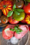 Verse basilicum en tomaten Royalty-vrije Stock Fotografie