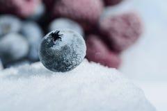 Verse bessen van bosbessen op een koud ijs tegen een achtergrond van bevroren bessen Stock Foto's