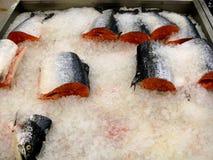 Verse bevroren rode vissenforel en lox Royalty-vrije Stock Foto's