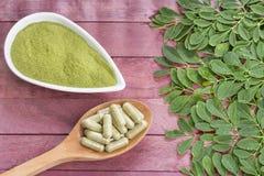 Verse bladeren, poeder, moringa capsules - oleifera Moringa Royalty-vrije Stock Foto
