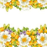 Verse bloemachtergrond Stock Afbeeldingen