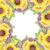 Verse bloemachtergrond Stock Foto