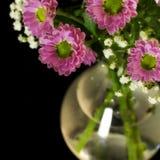 Verse bloemen in een vaas Stock Foto's