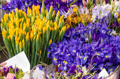 Verse bloemenboeketten bij de markt Stock Afbeelding