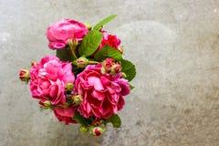 Verse bos van roze rozenbloemen in glas royalty-vrije stock afbeeldingen