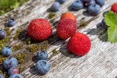 Verse bosbessen en aardbeien - gezonde voeding Royalty-vrije Stock Foto's