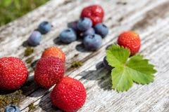 Verse bosbessen en aardbeien - gezonde voeding Royalty-vrije Stock Afbeeldingen