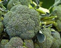 Verse broccoli Stock Afbeeldingen