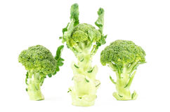 Verse broccoli Royalty-vrije Stock Fotografie