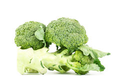 Verse broccoli Stock Afbeelding