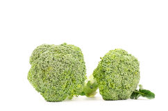 Verse broccoli Stock Fotografie