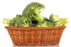 Verse broccoli in rieten die vislijn op witte achtergrond wordt geïsoleerd stock afbeeldingen