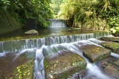 Verse cascade in een geheimzinnig bos met zonlicht door het overvloedige groen Stock Afbeelding