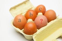 Verse chickHalf een dozijn verse kip eggsen eieren stock afbeeldingen