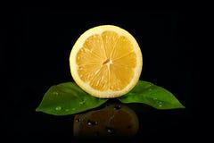 Verse citroen Royalty-vrije Stock Foto's