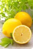 Verse citroen royalty-vrije stock afbeeldingen