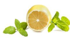 Verse citroen Royalty-vrije Stock Foto