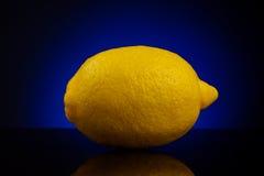 Verse citroen die op blauwe achtergrond wordt geïsoleerdj Royalty-vrije Stock Fotografie