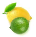 Verse citroen en kalk royalty-vrije stock afbeeldingen