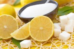 Verse citroen en suiker stock foto's