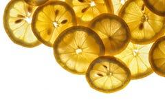 Verse citroenachtergrond Stock Afbeeldingen