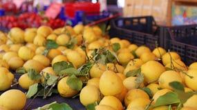 Verse citroenen bij landbouwersmarkt in Frankrijk, Europa Italiaanse citroen Straat Franse markt in Nice stock fotografie