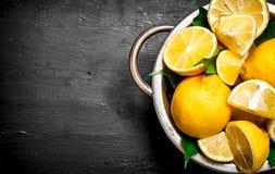 Verse citroenen in een kom Stock Foto