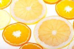 Verse citrusvrucht Royalty-vrije Stock Fotografie